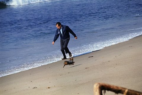 nixon-beach-wingtips-suit2.jpg